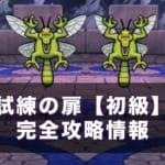 【ドラクエウォーク】試練の扉(第2週目)初級攻略方法!高スコアの出し方