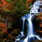 【ドラクエウォーク】竜頭の滝(栃木県)ランドマーク攻略!圏外には要注意!