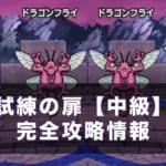 【ドラクエウォーク】試練の扉(第2週目)中級攻略方法!高スコアの出し方