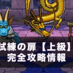 【ドラクエウォーク】試練の扉上級(4週目)攻略!高スコアの出し方【11/15更新】