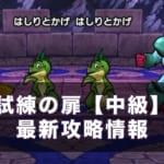 【ドラクエウォーク】試練の扉中級(3週目)攻略!ハイスコアSの取り方